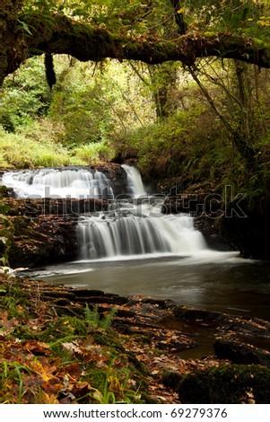 Beautiful water cascade in Clare Glens - stock photo