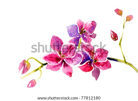 Beautiful watercolor branch of orchids