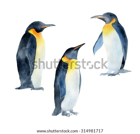 Beautiful watercolor illustration of three penguins. Hand drawn image of antarctic birds. Isolated objects on white background.