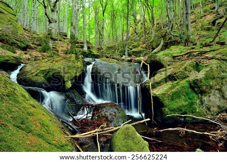 Beautiful waterfall at fairy tale green forest after rain. - stock photo