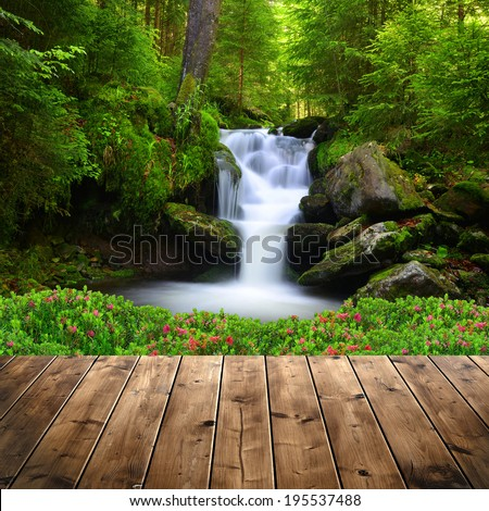 Beautiful waterfall in green forest  - stock photo