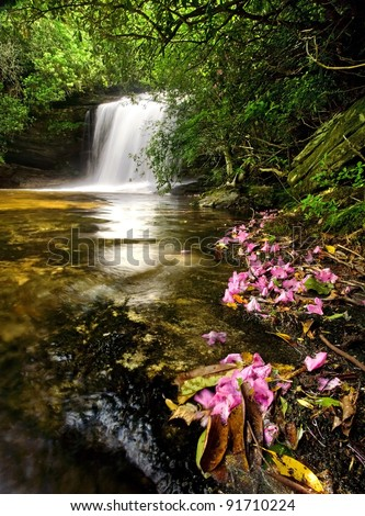 Beautiful waterfall in lush rain forest with pink flowers - stock photo