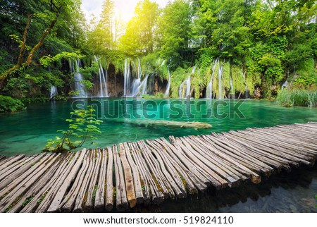 Beautiful waterfall in summer green forest