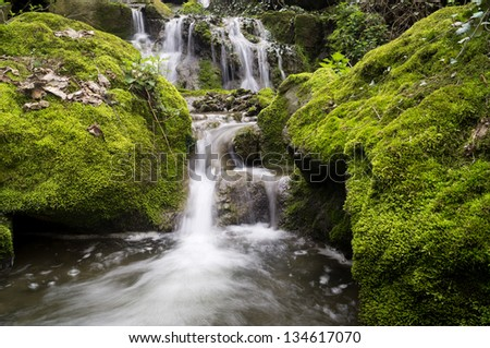Beautiful waterfall with rocks covered with green moss around