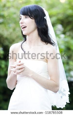 beautiful wedding bride - stock photo