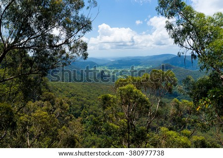 Beautiful wet tropical rainforest aerial view. Hiking in rainforest. Adventure rainforest, Lamington National Park, Queensland, Australia - stock photo