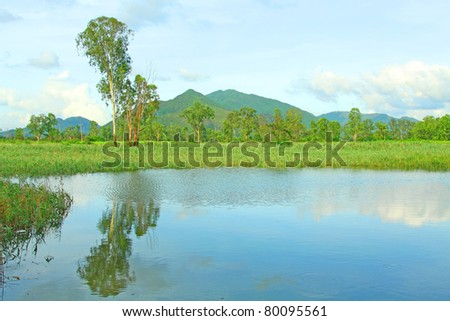 Beautiful wetland in Hong Kong with ponds around - stock photo