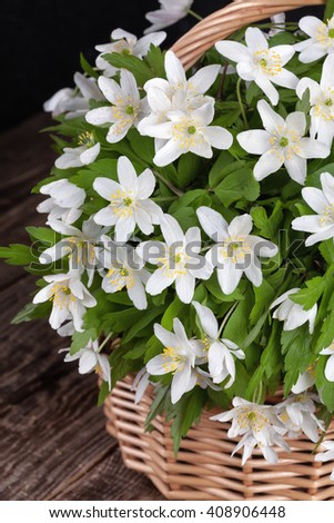 beautiful white anemone flowers in a basket on the table. - stock photo