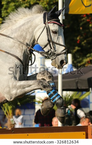 Beautiful white horse jumping over a hurdle in a cross country competition. Photo taken on October 10th, 2015 - stock photo