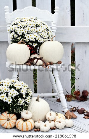 Beautiful white pumpkins and mums sitting on an old vintage chair on a porch in the autumn. - stock photo