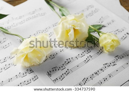 Beautiful white roses on musical notes pages background - stock photo