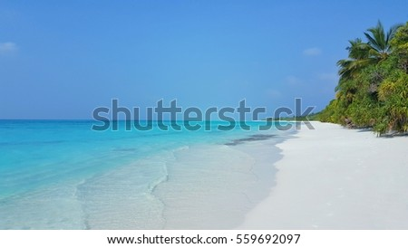 Beautiful white sand beach and sea background