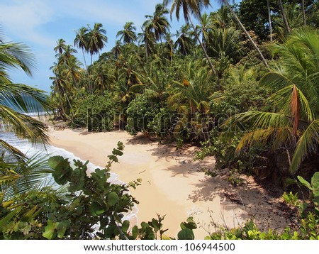 Beautiful white sand beach with lush tropical vegetation, the Caribbean, Costa Rica