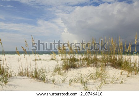 Beautiful White Sand Florida Beach with Clouds and Sea Oats - stock photo