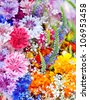 Beautiful Wild flowers background - stock photo