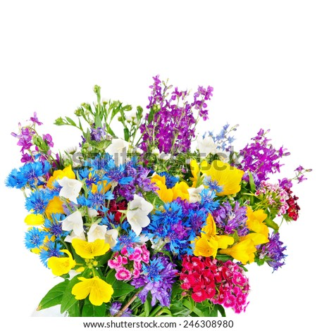 Beautiful Wild flowers bouquet in vase isolated on white - stock photo