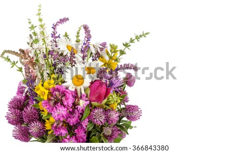 Beautiful Wild Flowers Bouquet. Wildflowers