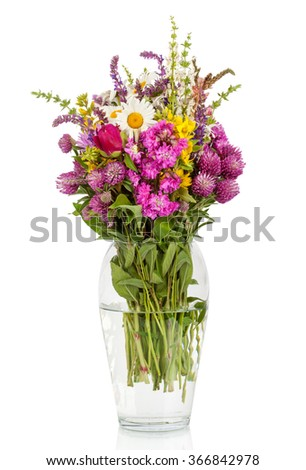 Beautiful Wild Flowers Bouquet. Wildflowers in vase - stock photo