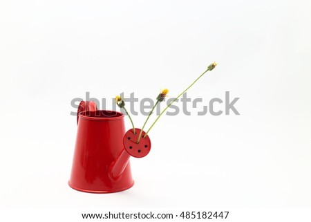 beautiful wild flowers with in red watering can on white background