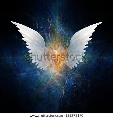 Beautiful Wing Design - stock photo