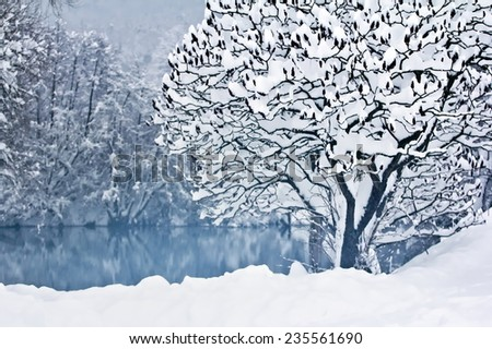 Beautiful winter landscape by the river Krka in Slovenia. - stock photo