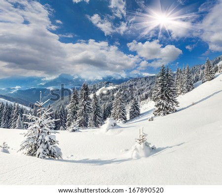 Beautiful winter landscape in the Carpathian mountains. Ukraine, Europe. - stock photo