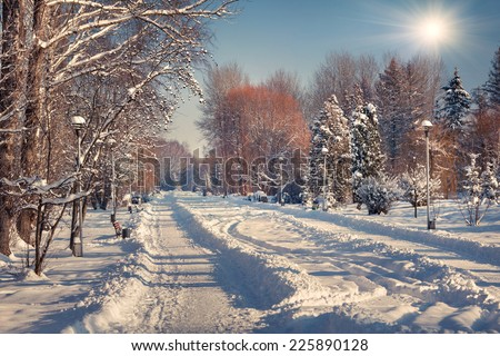 Beautiful winter landscape in the city park.  - stock photo