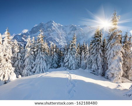 Beautiful winter landscape in the huge mountains - stock photo