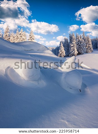 Beautiful winter landscape in the mountain forest. - stock photo