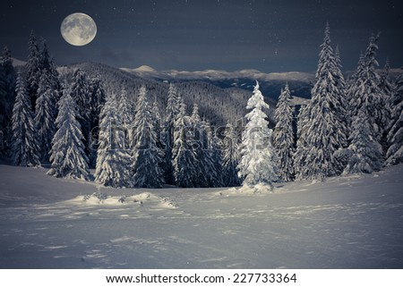 Beautiful winter landscape in the mountains at night with stars and moon - stock photo