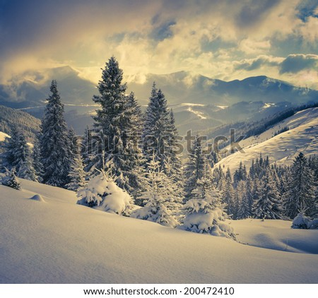 Beautiful winter landscape in the mountains. Retro style.  - stock photo