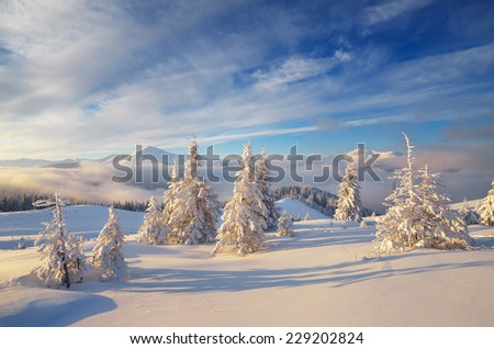 Beautiful winter landscape. Mountains at dawn. Christmas view - stock photo
