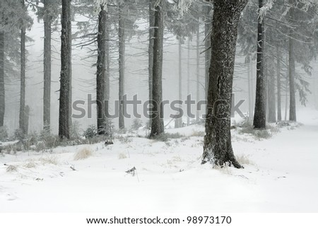 Beautiful winter landscape taken in polish Beskid mountain, Szyndzielnia and Klimczok