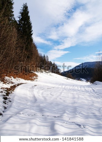 Beautiful winter landscape. Tracks in the snow - stock photo