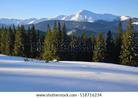 Beautiful winter landscape with fir trees and mountain peaks covered with snow.