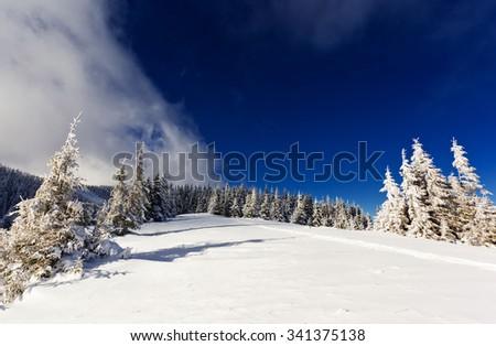 Beautiful winter landscape with snow covered trees. Dramatic wintry scene. Location Carpathian, Ukraine, Europe. Beauty world. - stock photo
