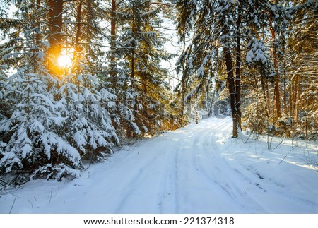 beautiful winter landscape with the forest and a road - stock photo