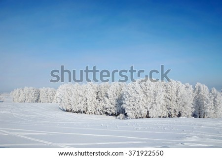 Beautiful winter landscape with woods covered with hoarfrost - stock photo