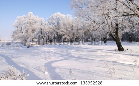 Beautiful winter landscapes taken on a clear day