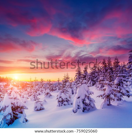 Beautiful Winter Nature Landscape Amazing Mountain View Of Sunset Scenic Image Woodland