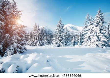 Beautiful Winter Nature Landscape Amazing Mountain View Scenic Image Of Woodland Frosty Day