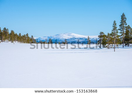 beautiful winter picture with forests and mountains and a clear blue sky - stock photo