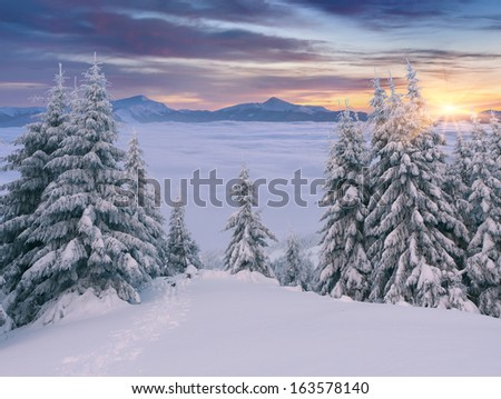 Beautiful winter sunrise in the mountains. - stock photo