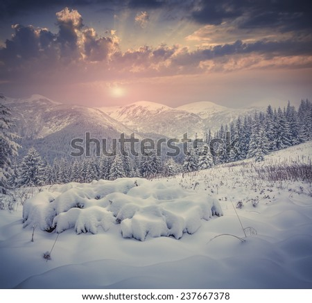 Beautiful winter sunrise with snow covered trees in the mountains. Retro style.