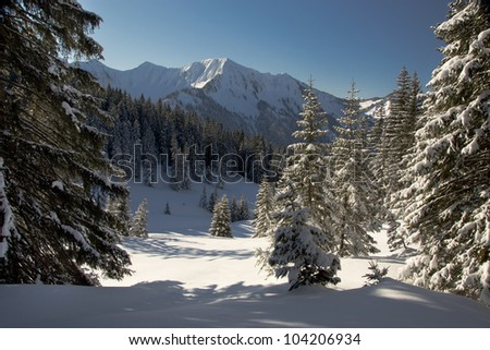 Beautiful winter weather in the alps in Austria with snow and a blue sky.