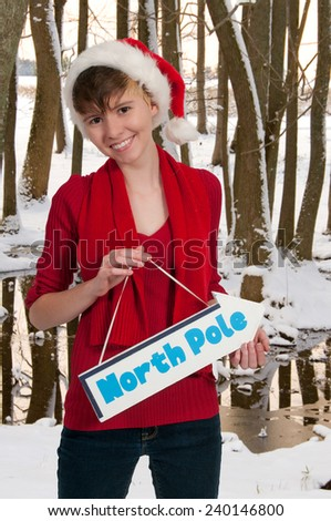 Beautiful woman elf holding a north pole sign