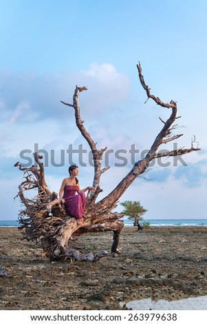 Beautiful woman in indian bright dress is sitting on the snag on the tropical coastline background - stock photo