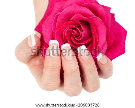 Beautiful woman's hand with perfect french manicure holding pink rose on white background - stock photo