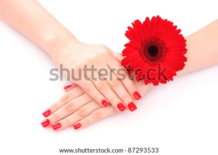 beautiful woman's hands and a flower isolated on white - stock photo