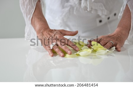 Beautiful woman's hands with yellow petals in white background - stock photo